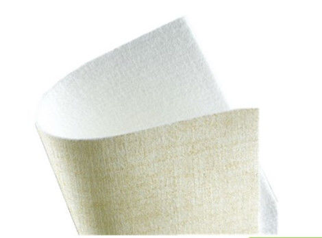 PPS High Temperature Resistant Needle Punched Filter Felt Anti Acid ISO Certification